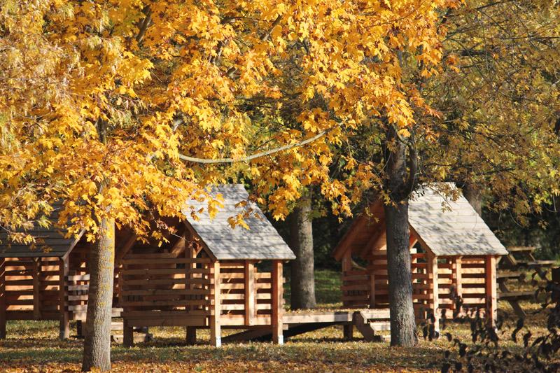les etangs d 39 or parc eco loisirs de merceuil tailly merceuil beaune et le pays beaunois. Black Bedroom Furniture Sets. Home Design Ideas